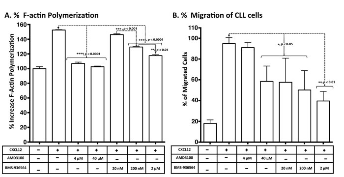 Inhibition of CXCL12-induced response and migration of primary CLL cells in a transwell assay by Ulocuplumab (BMS-936564) and AMD3100.