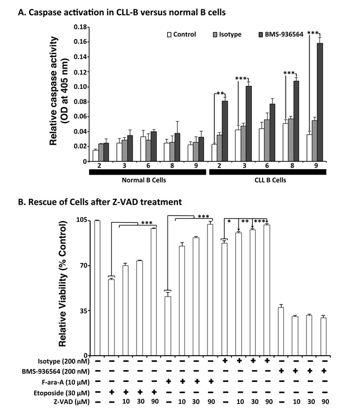 Effect of Ulocuplumab (BMS-936564)-mediated apoptosis in CLL cells is caspase-independent.