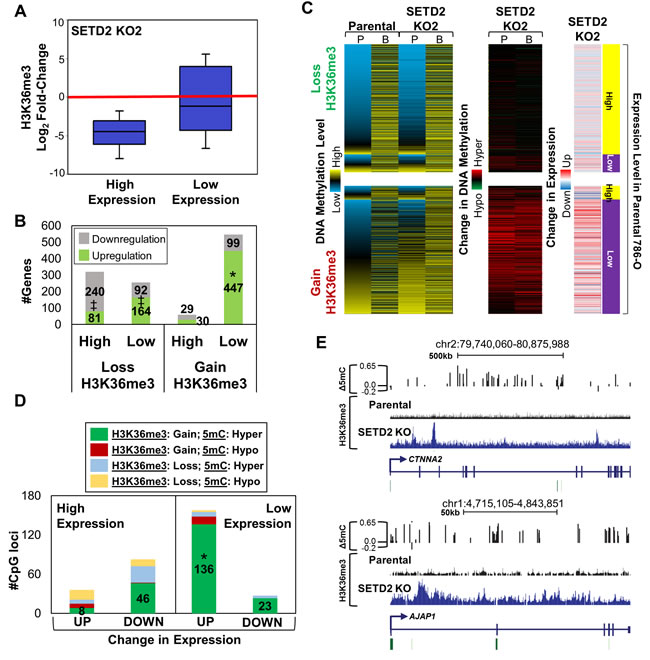 Redistribution of H3K36me3 with SETD2 inactivation is linked to changes in expression.