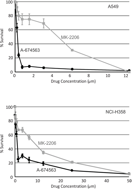 An AKT1 inhibitor is a more potent inhibitor of human lung cancer cell survival than a pan-AKT inhibitor.