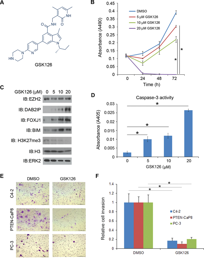 Inhibition of CRPC cell growth by the EZH2 small molecule inhibitor GSK126.