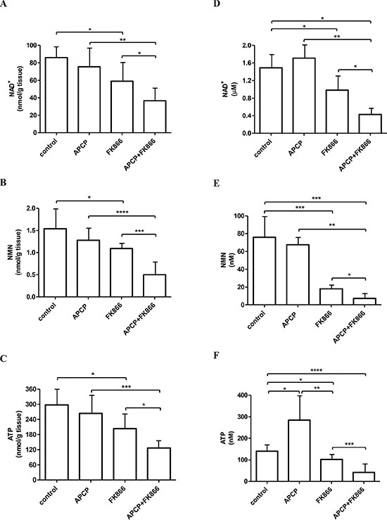 NAD+, NMN and ATP levels in tumors and in ascitic exudates from control and treated mice.