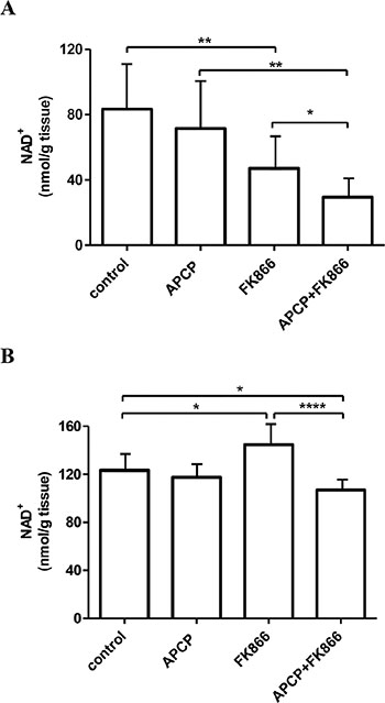 NAD+ levels in hearts and livers from control and treated mice.