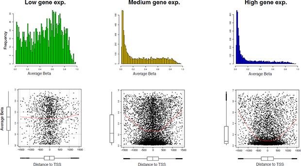 Association between DNA methylation and gene expression.