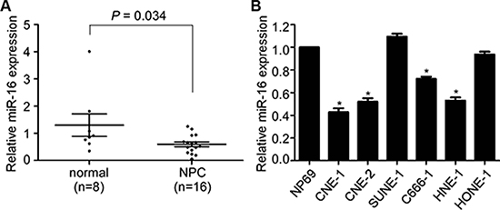 miR-16 is decreased in NPC tissues and cell lines.