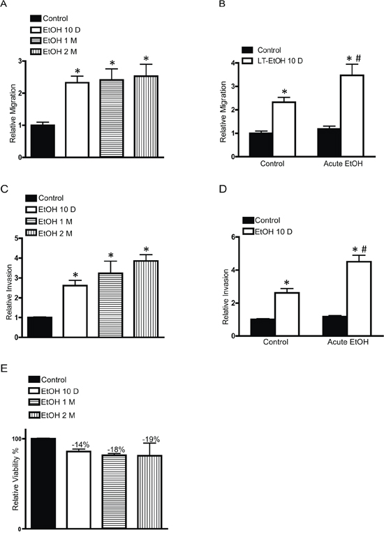 Effects of chronic ethanol exposure on cell migration/invasion.