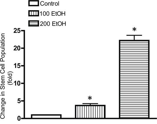 Effects of chronic ethanol exposure on stem-like cell population.