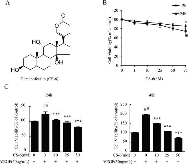 CS-6 inhibits VEGF-induced proliferation of HUVECs.