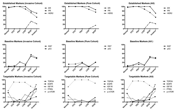 Trends of expression of biomarkers within different lesion subtypes.