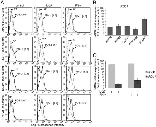 IL-27 increases PD-L1 surface protein and mRNA expression in EOC cells