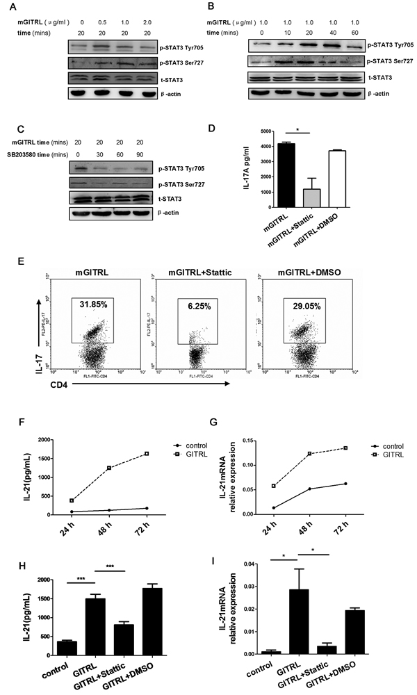 GITRL protein promotes the phosphorylation of STAT3 on Tyr705 and Ser727