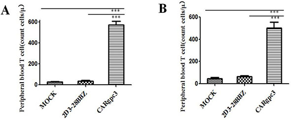 The quantities of GFP-positive CAR T cells in the peripheral blood of mice with s.c. established LSCC xenografts 2 weeks after T cell infusion.
