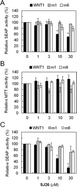 SJ26 repressed WNT1 expression in a G-quadruplex dependent manner.