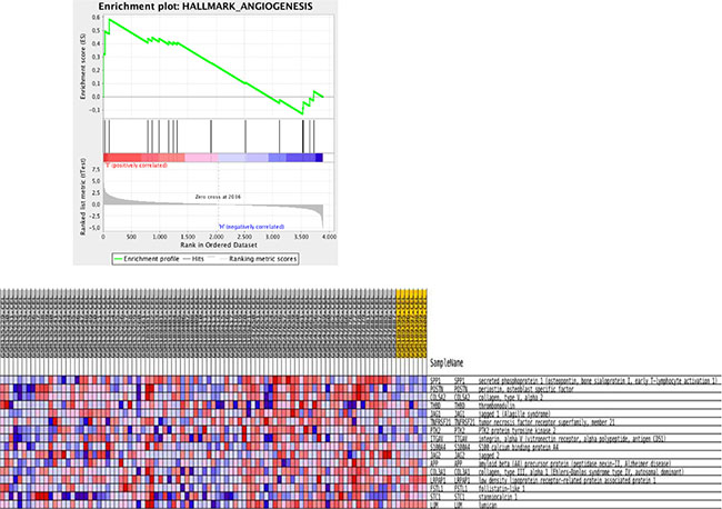 Gene set enrichment analysis for KEGG pathways mapping showing enrichment plot on the hallmark Angiogenesis comparing normal with invasive cancer samples.