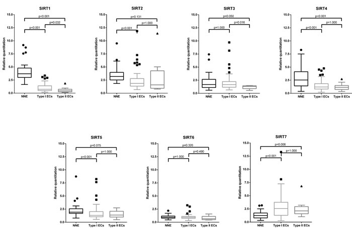 Sirtuin mRNA expression: Box-plots comparing expression levels between endometrial carcinomas (EC) histological types and non-neoplastic endometria (NNE).
