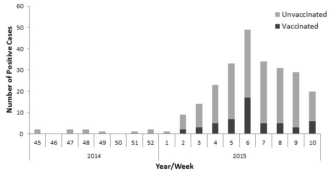 Vaccination status of patients infected with H3N2 influenza.