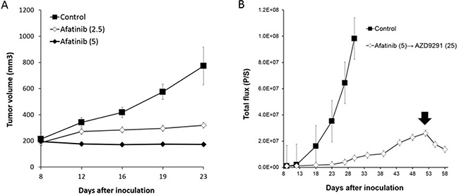 The efficacy of afatinib and high dose-AZD9291 after afatinib resistance in LMC model.
