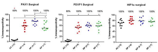 Immunopositive quantification of surgical intervertebral disc samples.