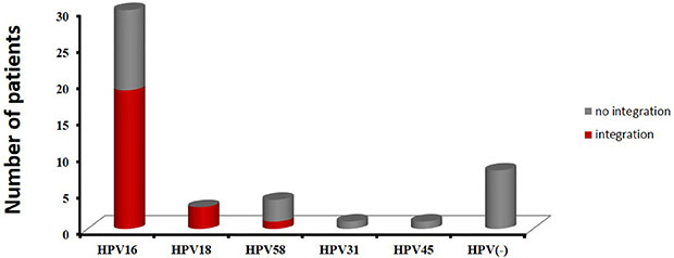 The distribution of HPV subtypes in 47 cervical cancer cases.