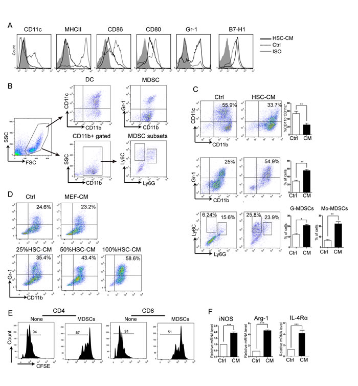 Effects of HSC-CM on BM-derived DC differentiation