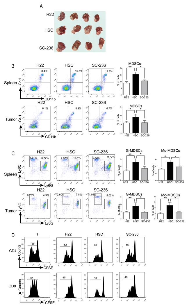 HSCs promoted HCC growth by inducing MDSCs