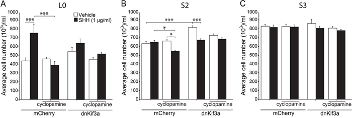 The effects of dnKif3a expression and SHH on GBM cell proliferation are cell-line dependent.