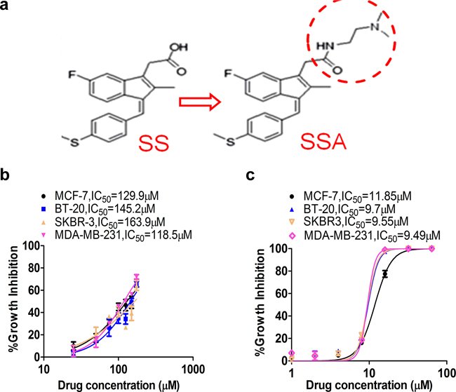 SSA shows greater potency to inhibit breast cancer cell growth compared to SS.