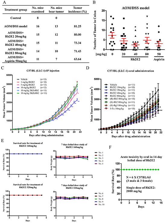 In vivo anti-tumor effect of Rh2E2 on AOM/DSS-induced colon carcinogenesis and LLC-1 xenograft mouse model.