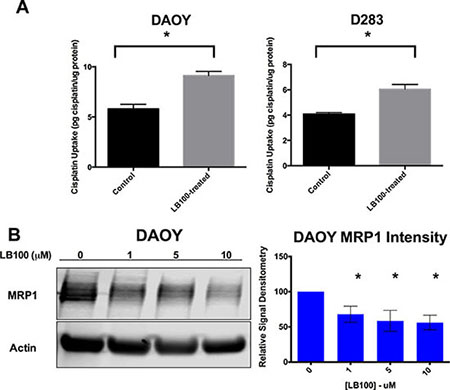 LB100 decreases cisplatin uptake and is associated with down-regulation of MRP1.