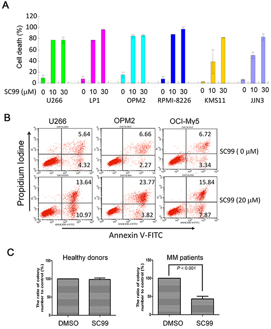 SC99 induces MM cell death.