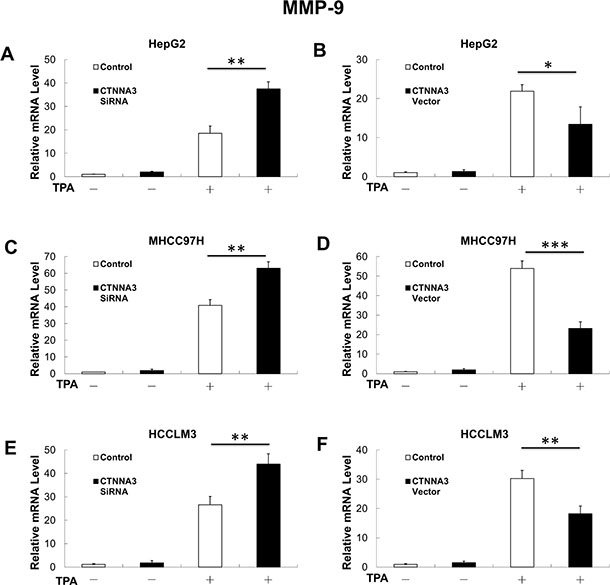 MMP-9 mRNA expression is negatively related with in CTNNA3 HCC cells.
