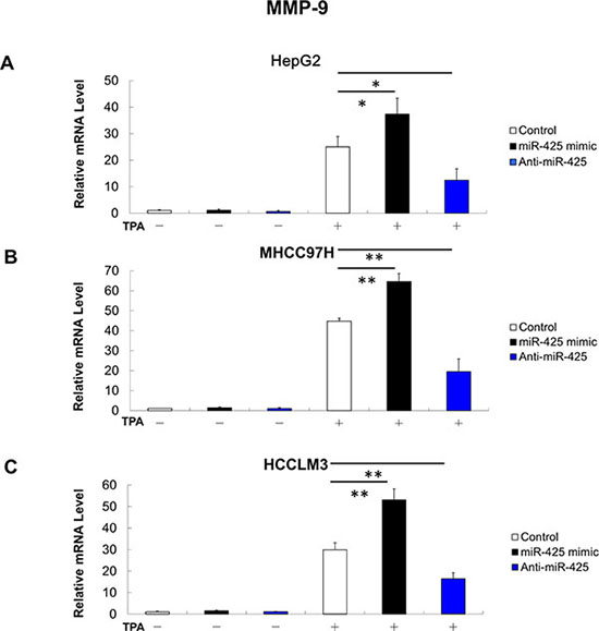 MMP-9 mRNA expression is positively related with miR-425 in HCC cells.