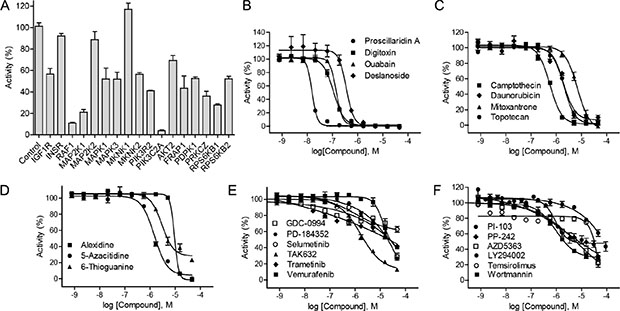 Identification of HIF-1 pathway inhibitors by HIF-1α–NanoLuc assay.