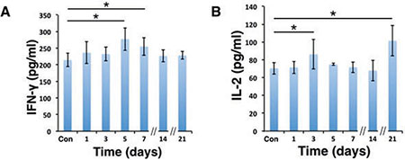 IFN-γ and IL-2 levels were elevated in serum after D-hep cell challenge.