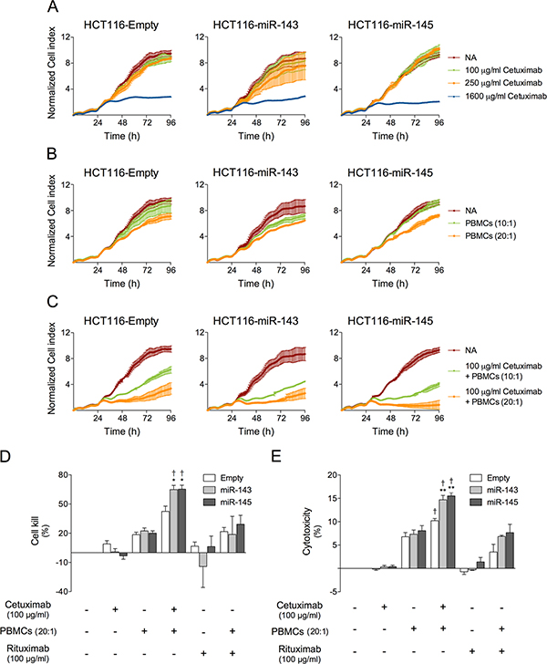 miR-143 or miR-145 overexpression increases cetuximab-mediated ADCC in HCT116 cells.