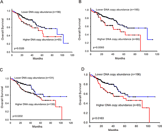 Survival prediction by DNA copy number abundance of ErbB family in 261 patients.