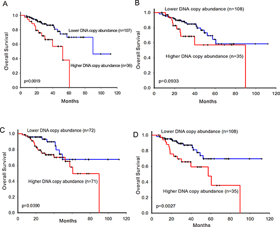 Survival prediction by DNA copy number abundance of ErbB family in 143 patients carrying EGFR-activating mutation.