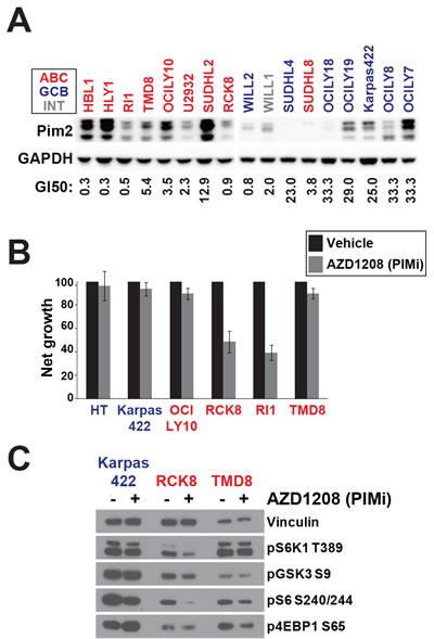 PIM can regulate AKT-independent mTOR signalling.