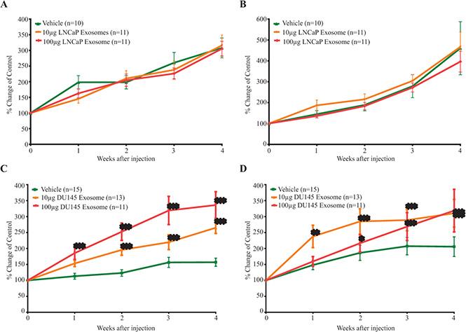 The in vivo effect of exosomes on the (A) tumor volume (B) PSA level of LNCaP mice xenograft treated with LNCaP exosomes and the (C) tumor volume (D) PSA level of LNCaP mice xenograft treated with DU145 exosomes.