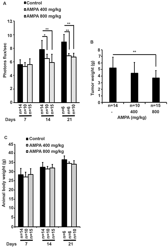 Effects of AMPA treatment on prostate tumor growth in athymic nude mice.
