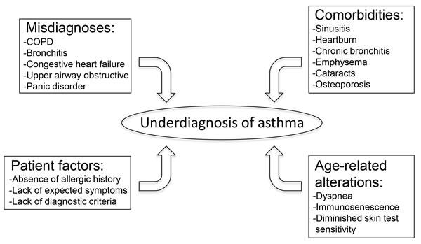This schematic highlights the common factors that lead to underdiagnosis of asthma in the elderly population.