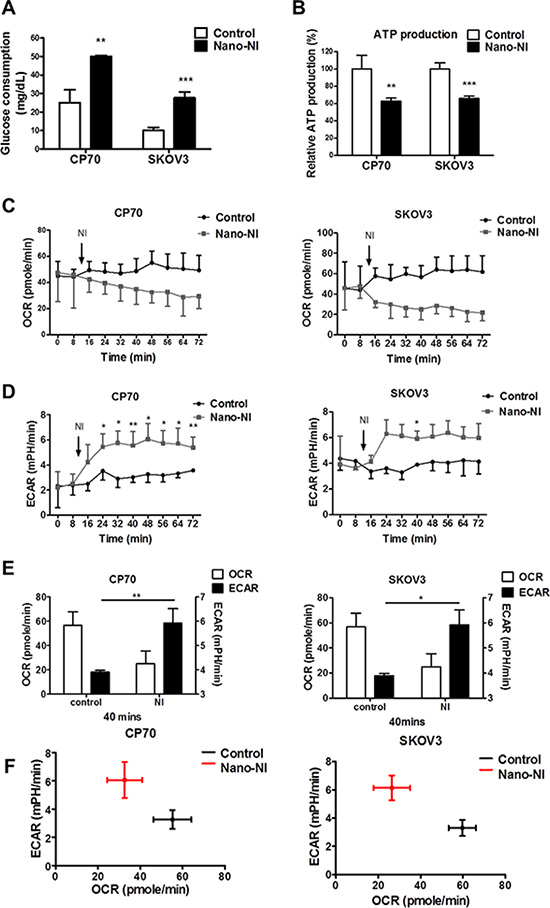 Nano-NI changes the ovarian cancer metabolic phenotype and prompts a metabolic shift.
