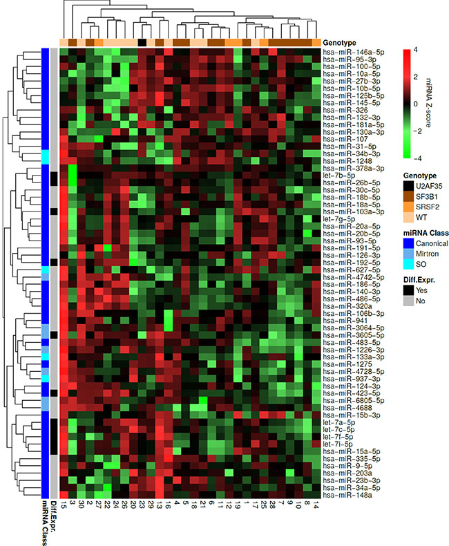 Hierarchical clustering of the MDS patient samples and miRNAs.