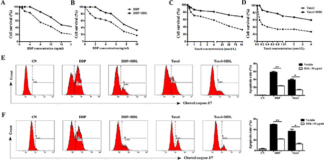 HDL increases the chemoresistance of NPC cells.