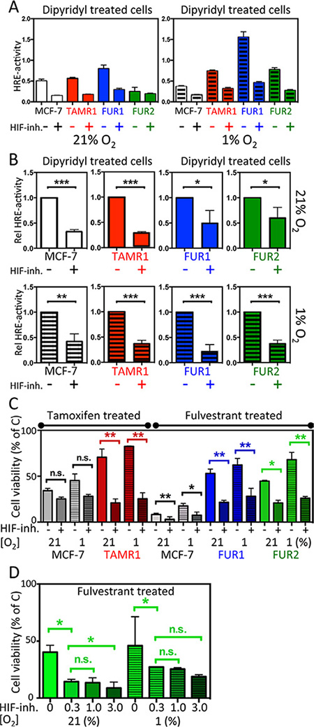 Effect of the HIF-inhibitor FM19G11 on HIF-transcriptional activity and response to antiestrogen treatment in MCF-7 and antiestrogen resistant breast cancer cells.