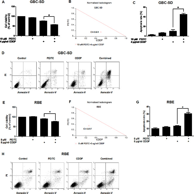 PEITC enhances CDDP-induced apoptosis in GBC-SD and RBE cells.