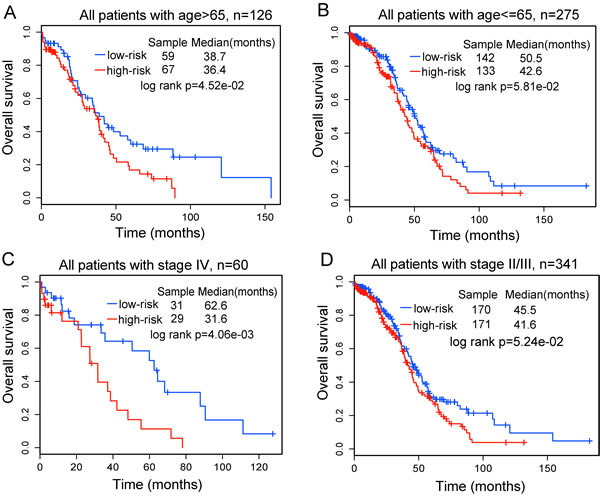 Stratification analyses of all patients with available age or tumor stage information using the ten-lncRNA signature.