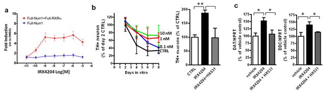 IRX4204 activates Nurr1 and improves DA neuron survival in primary VMB culture.