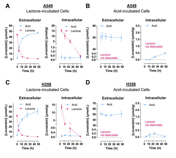 Time-course of extracellular and intracellular concentrations of lovastatin lactone and acid following addition of either lovastatin lactone or lovastatin acid to A549 or H358 cells.