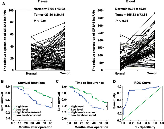 Upregulation of OR3A4 expression in primary tumor tissues and peripheral blood from gastric carcinoma patients, compared with the corresponding controls.